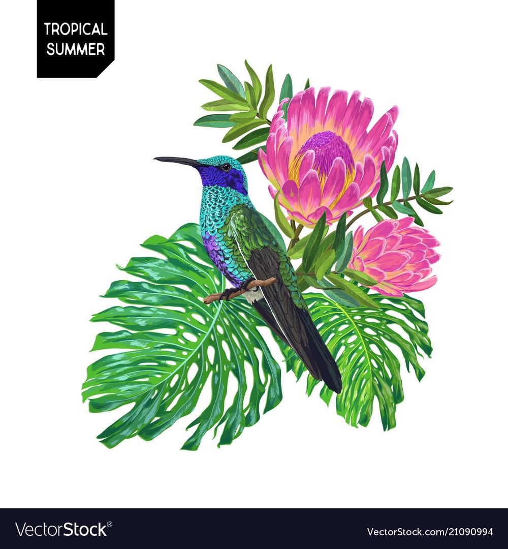 Summer tropical design with hummingbird flowers
