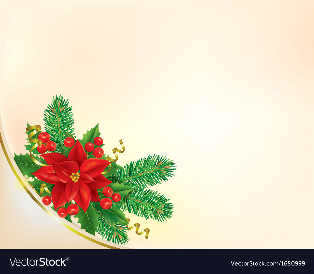 corner christmas banner with poinsettia royalty free vector