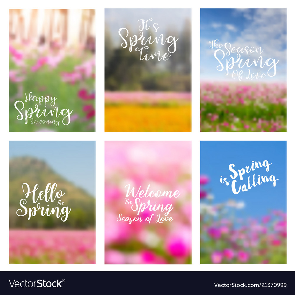 Spring flowers ideas concept with positive quotes vector image mightylinksfo