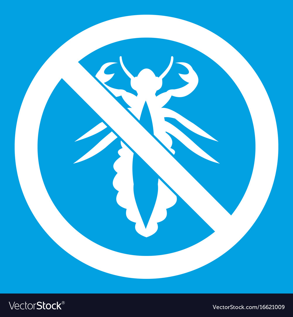 No louse sign icon white vector image