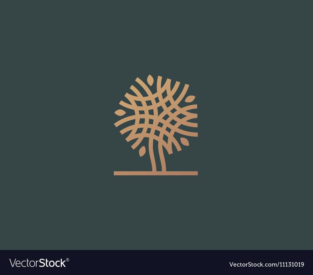 Abstract linear tree logo icon design