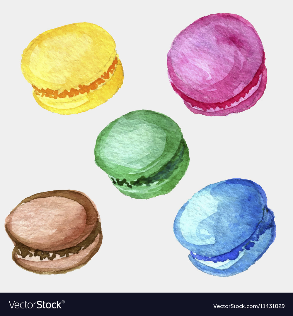 Watercolor drawing macaroons