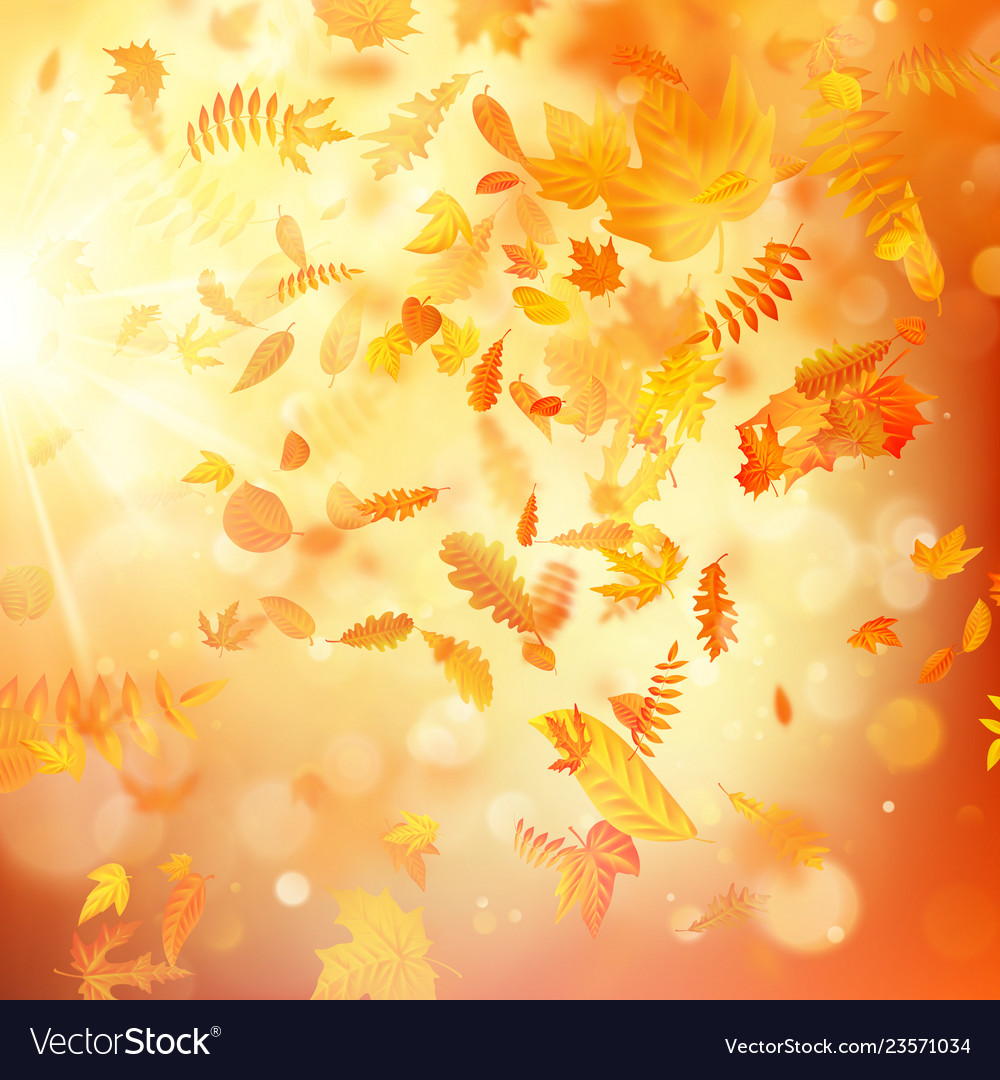 Autumn background with natural leaves and bright