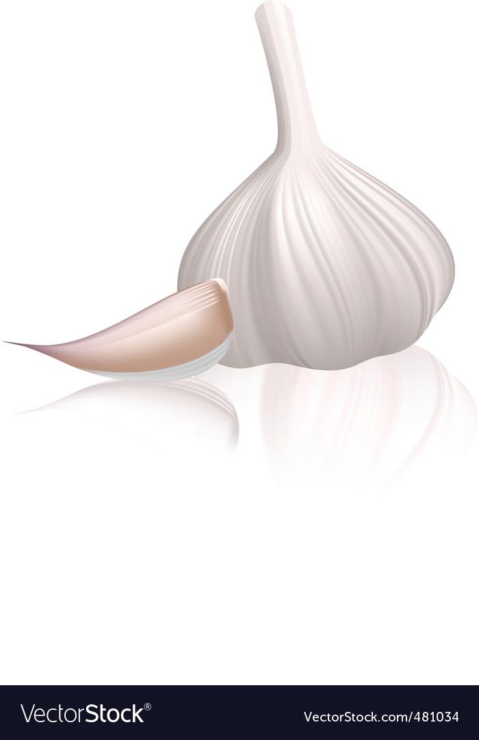 Garlic with clove