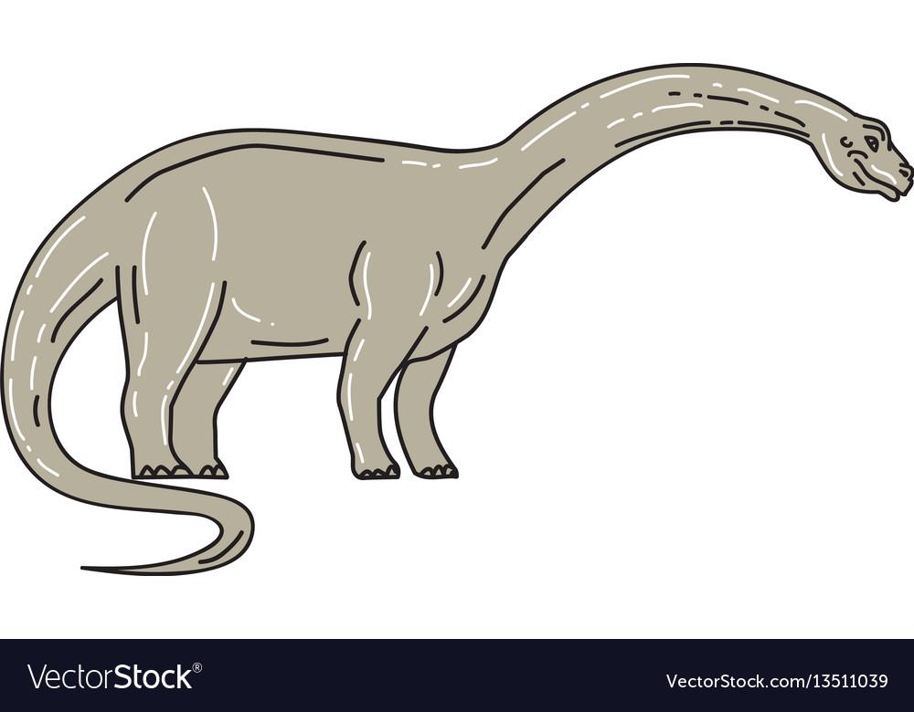 Brontosaurus dinosaur looking down mono line