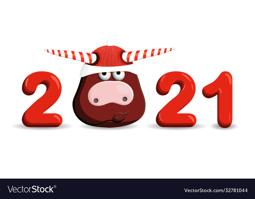 2021 year bull funny bull isolated on a