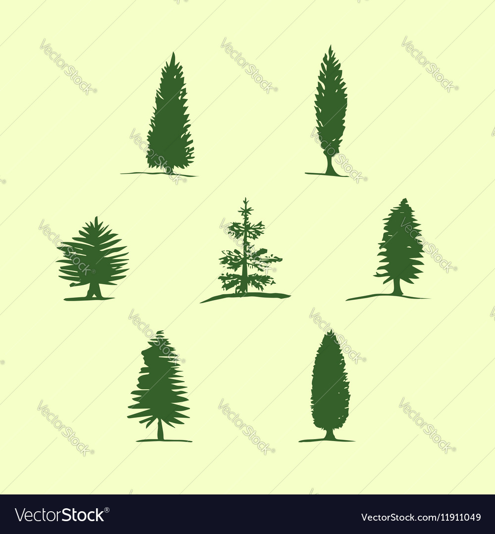 Set of hand drawn sketch trees - pine fir vector image