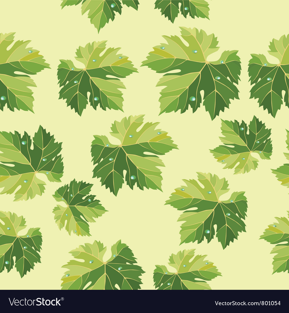 Background From Vine Leaves Seamless Pattern Vector Image