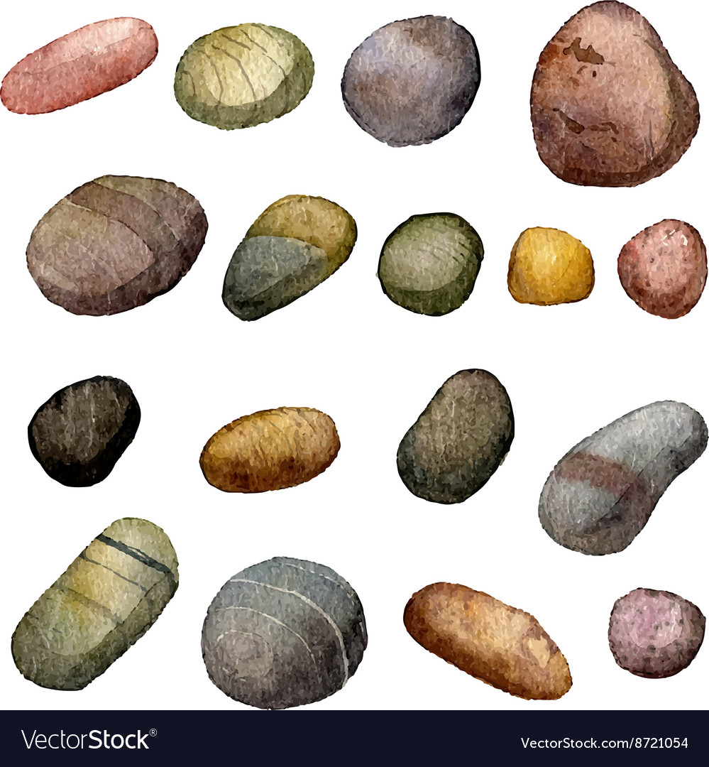 Sea stones drawing in watercolor vector image