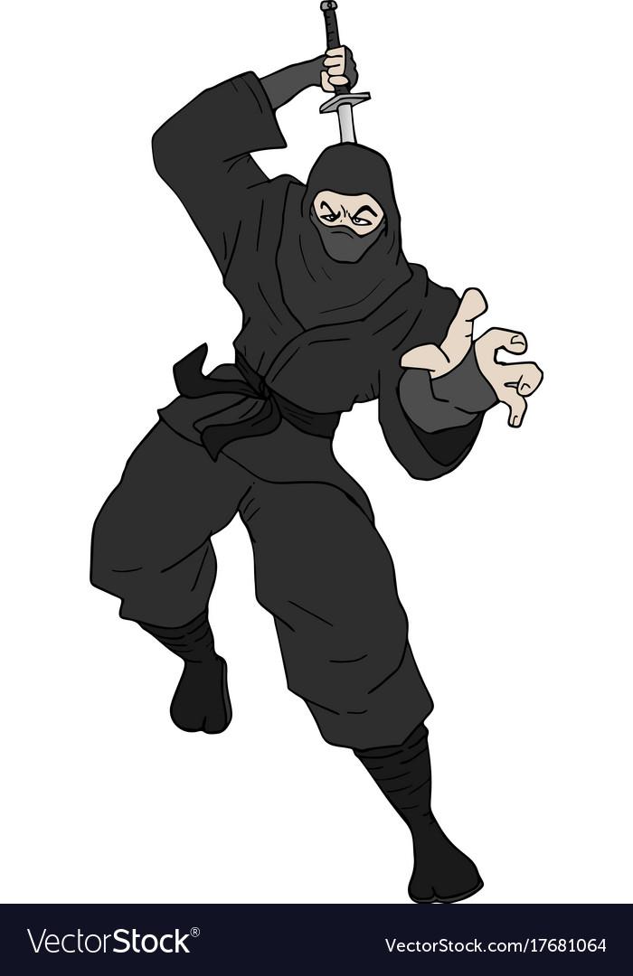 Black ninja attack