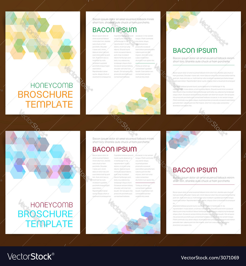 Abstract modern flyer brochure vector image