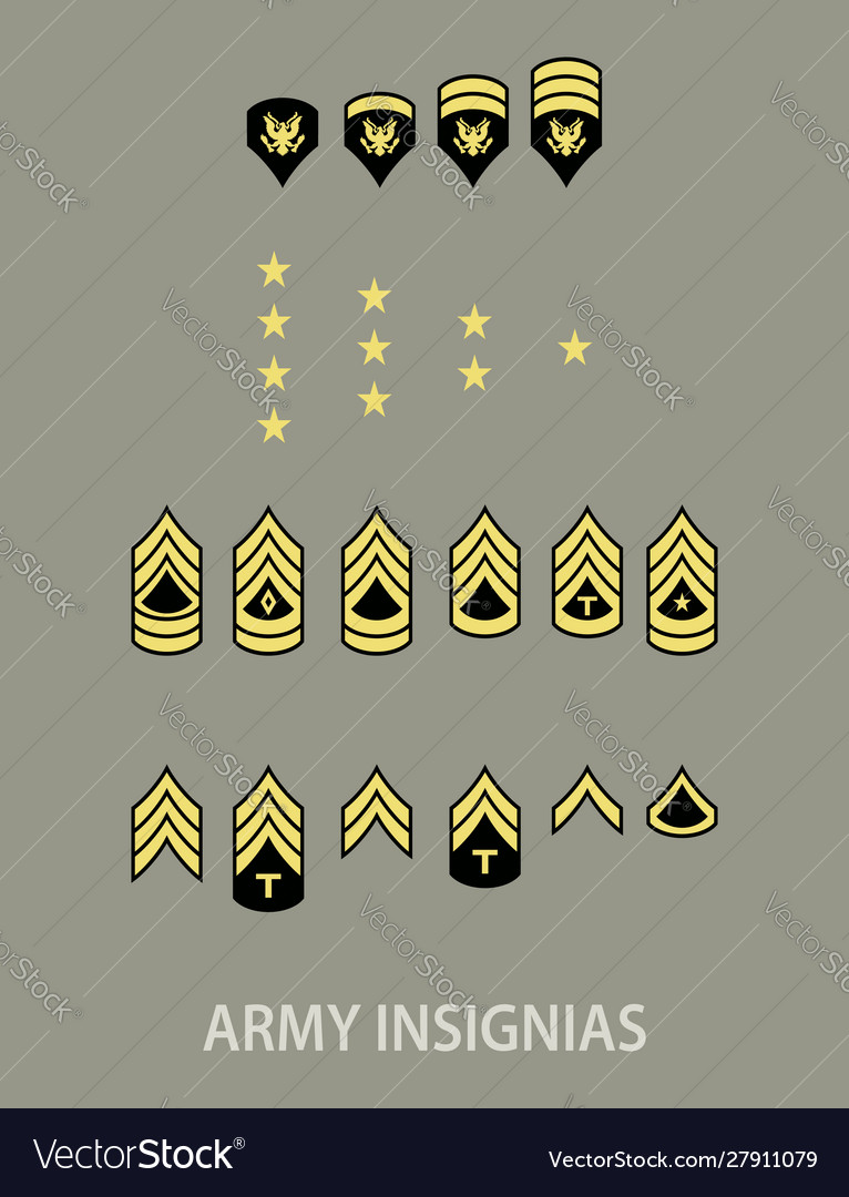 Army military insignia
