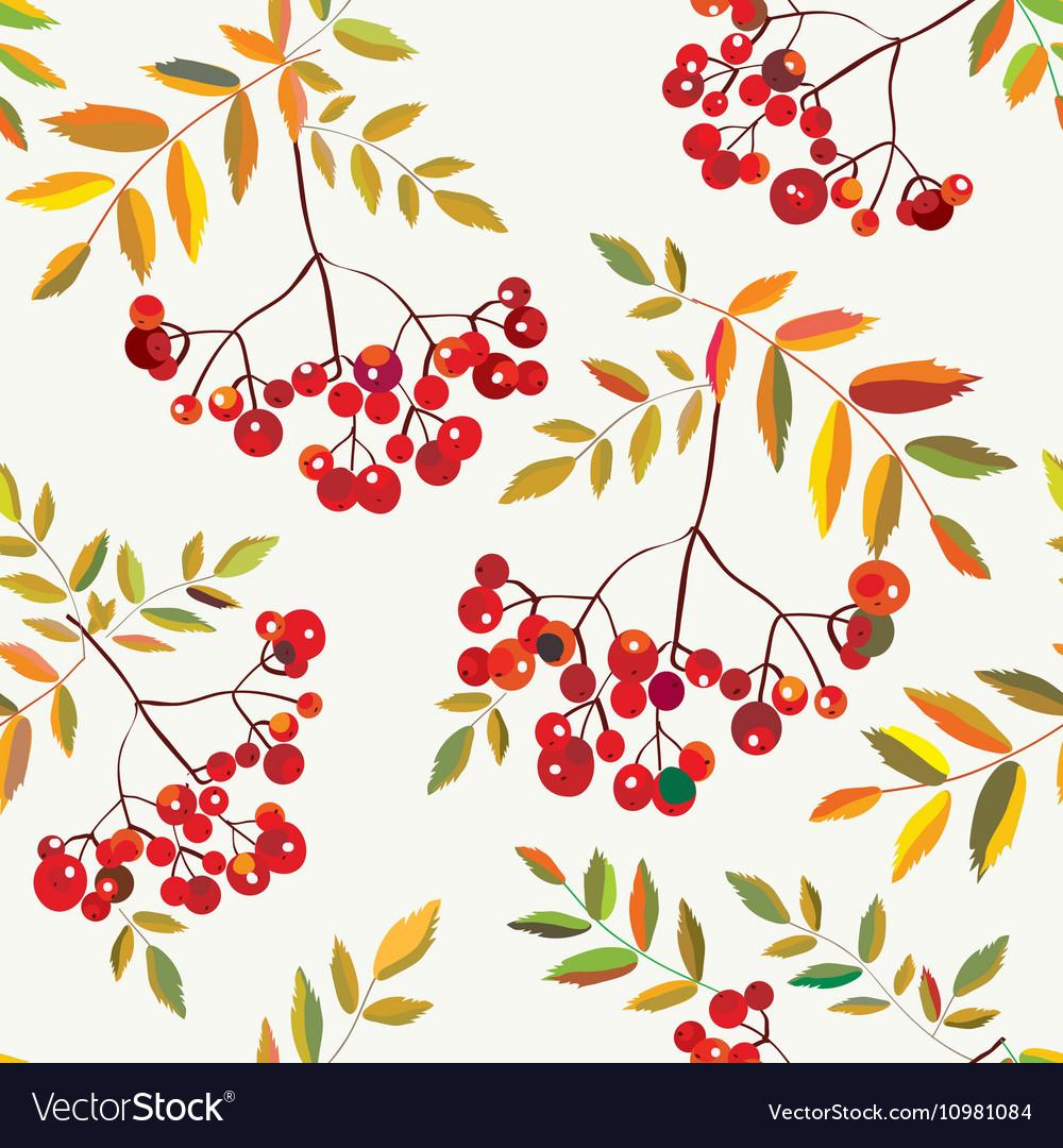 Rowan berries seamless autumn pattern