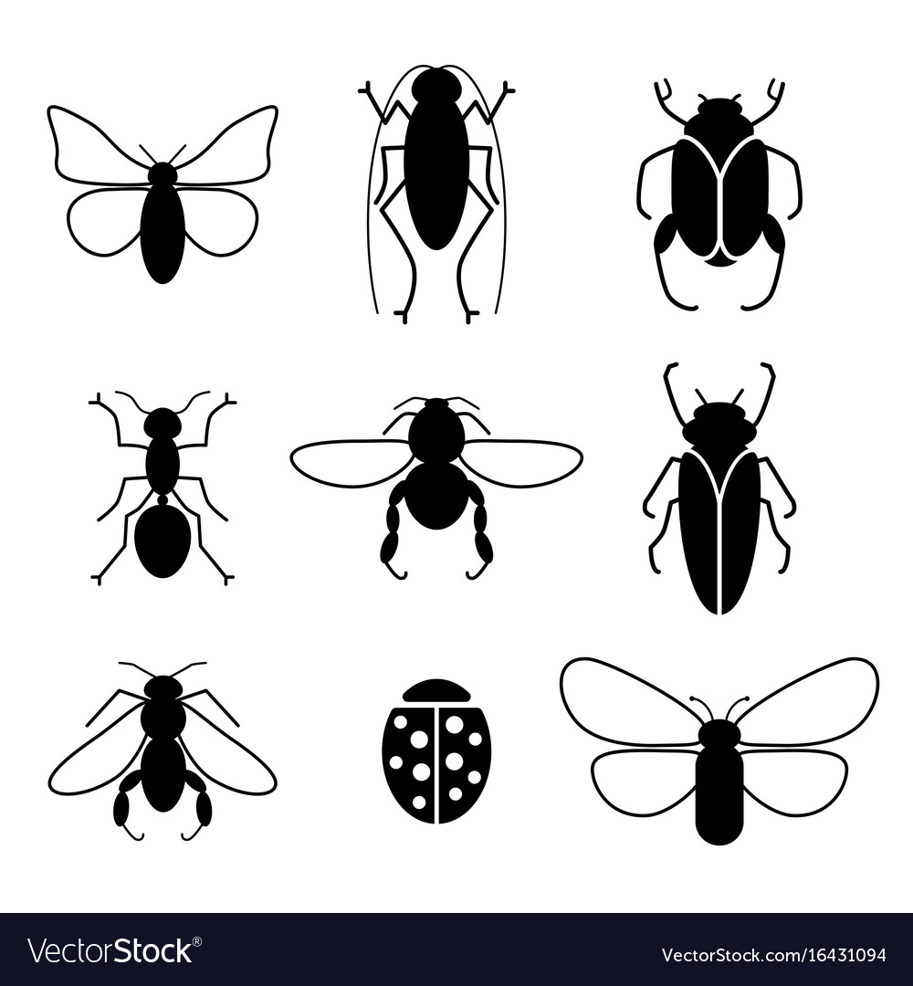 Insects set silhouette icons vector image
