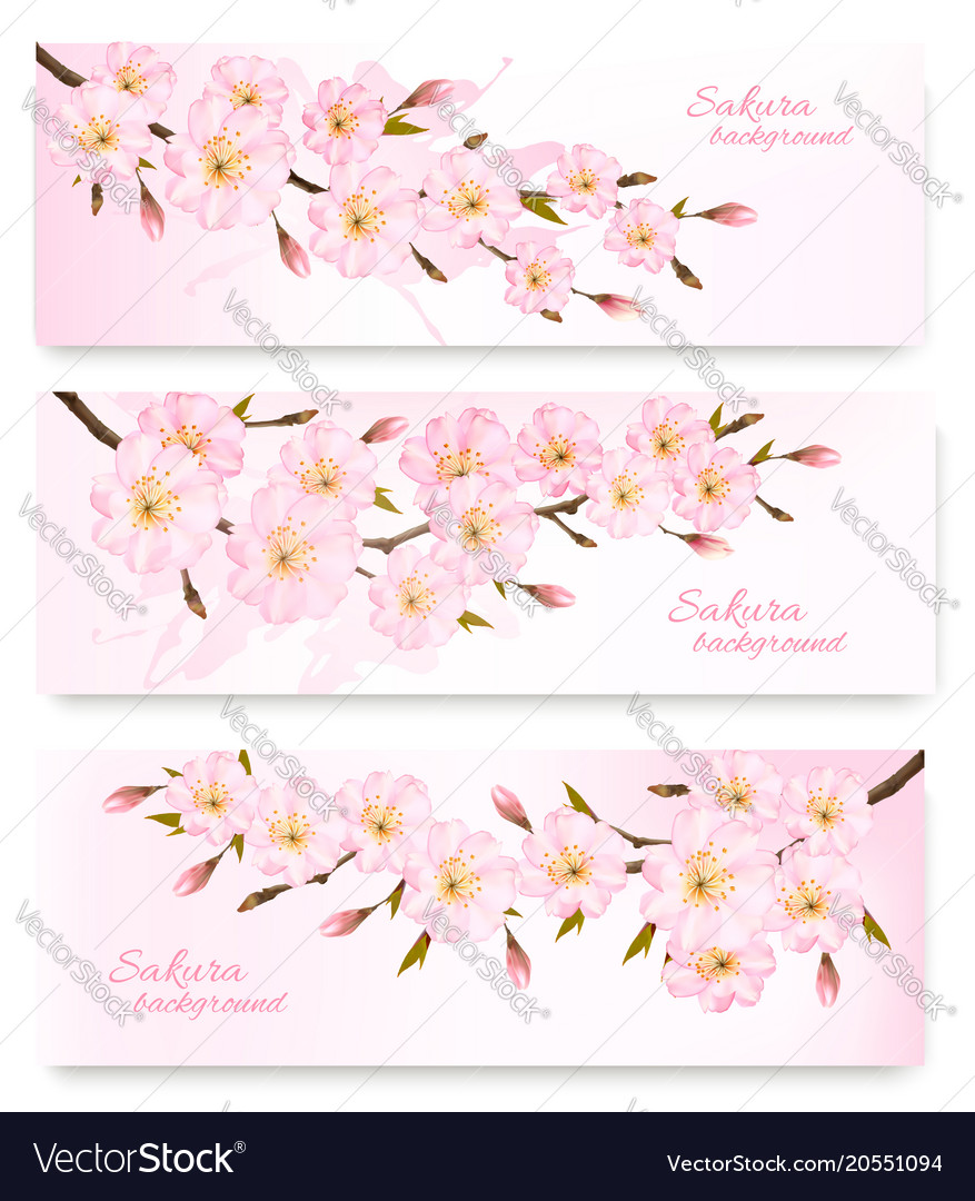 Nature spring banners with al pink sakura