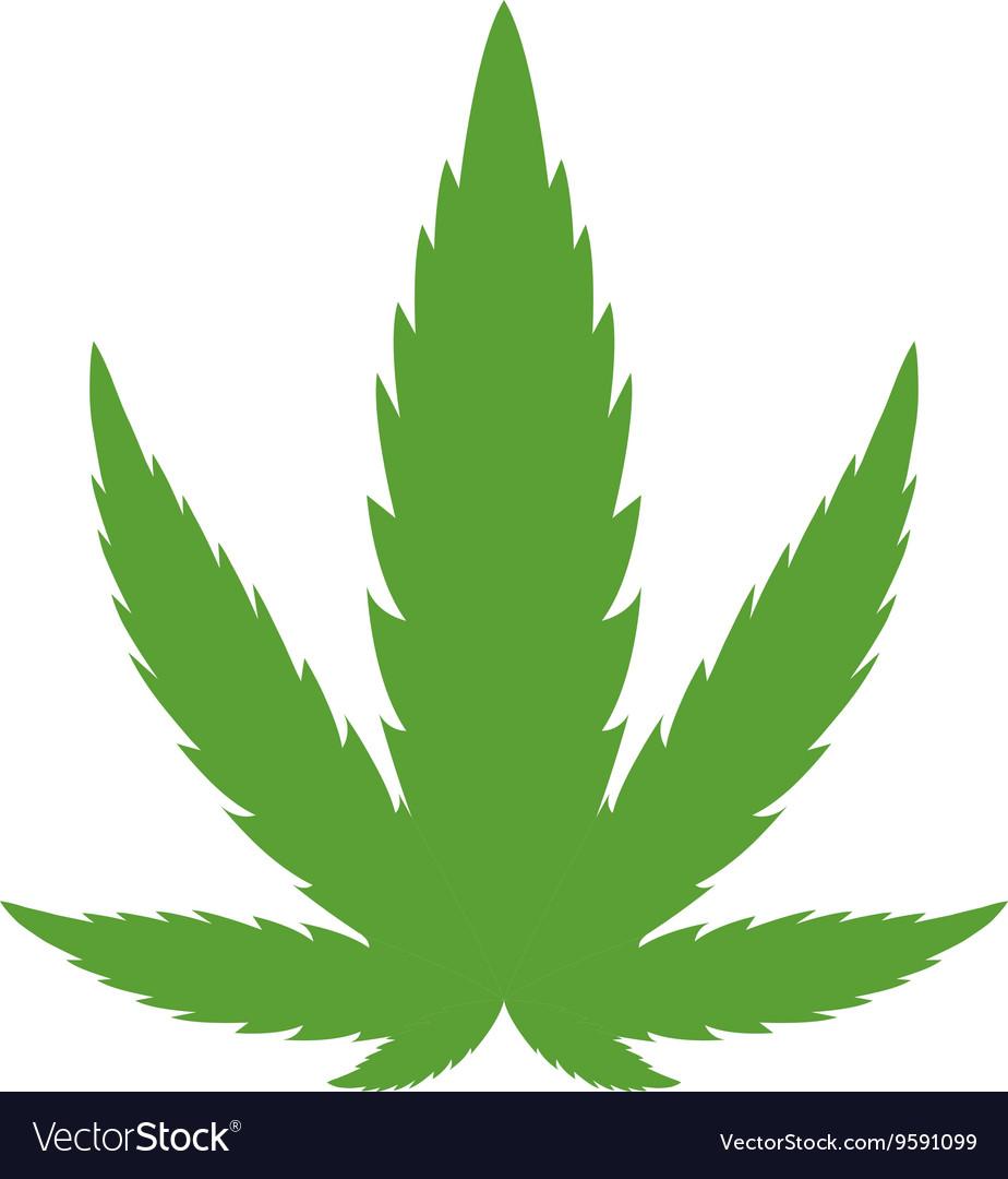cannabis marijuana leaf royalty free vector image rh vectorstock com marijuana leaf vector image marijuana leaf vector black