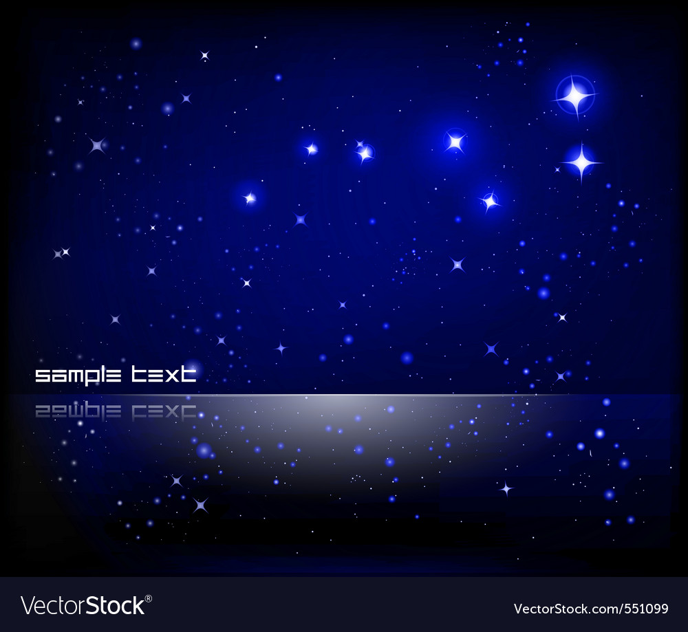 Starry night sky vector image