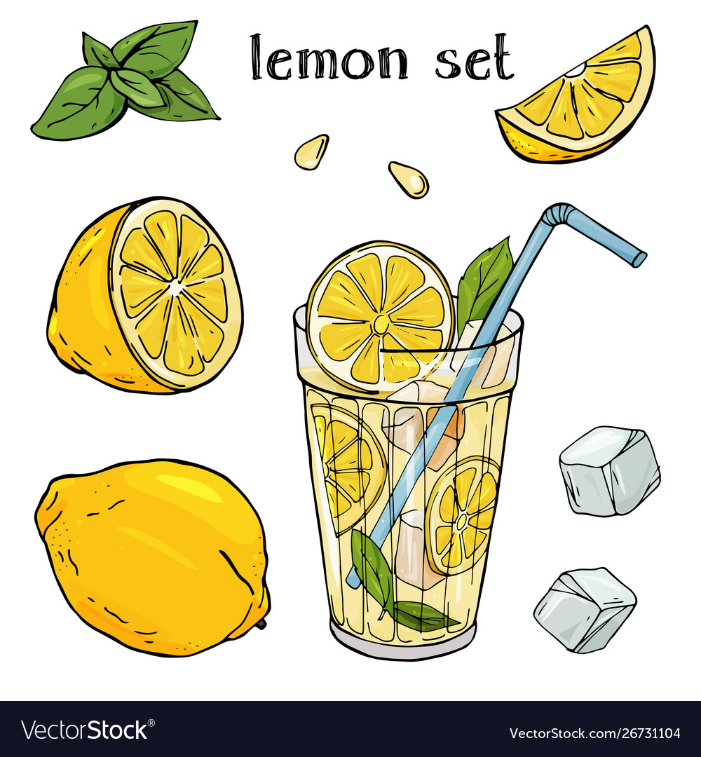 Cool lemonade in a glass cup with ice and mint