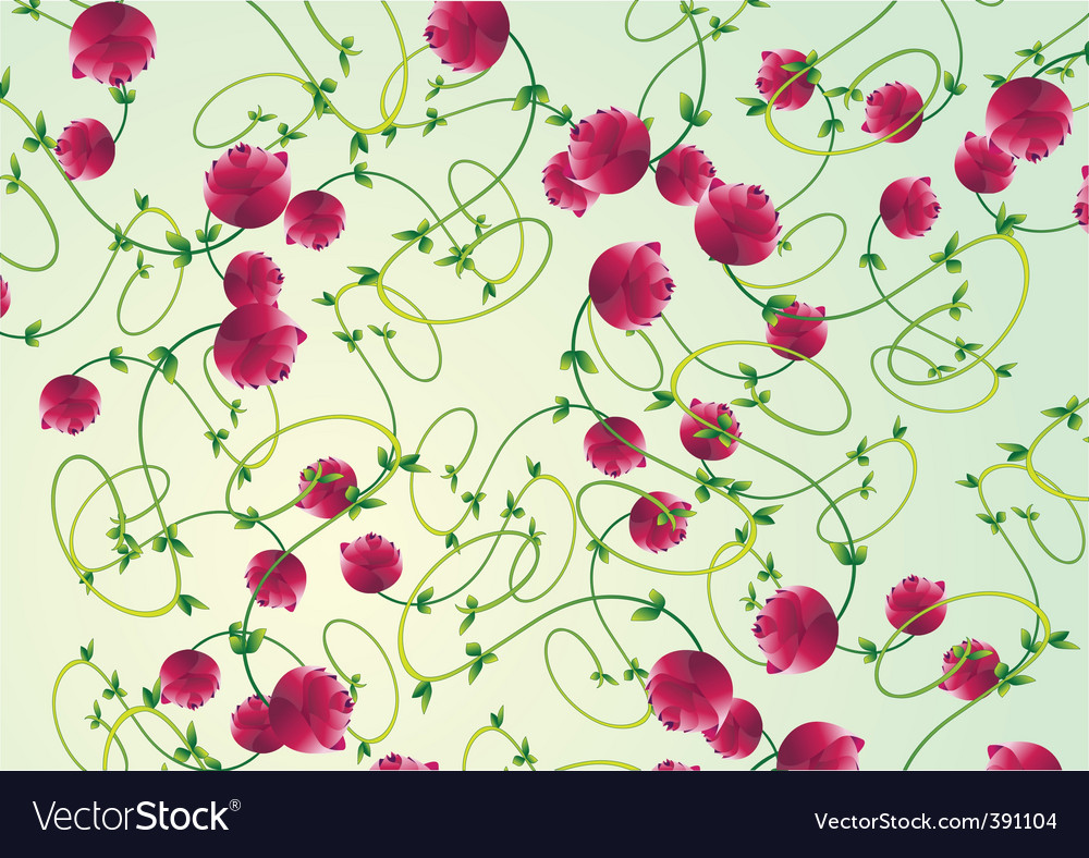 Rose floral pattern vector image