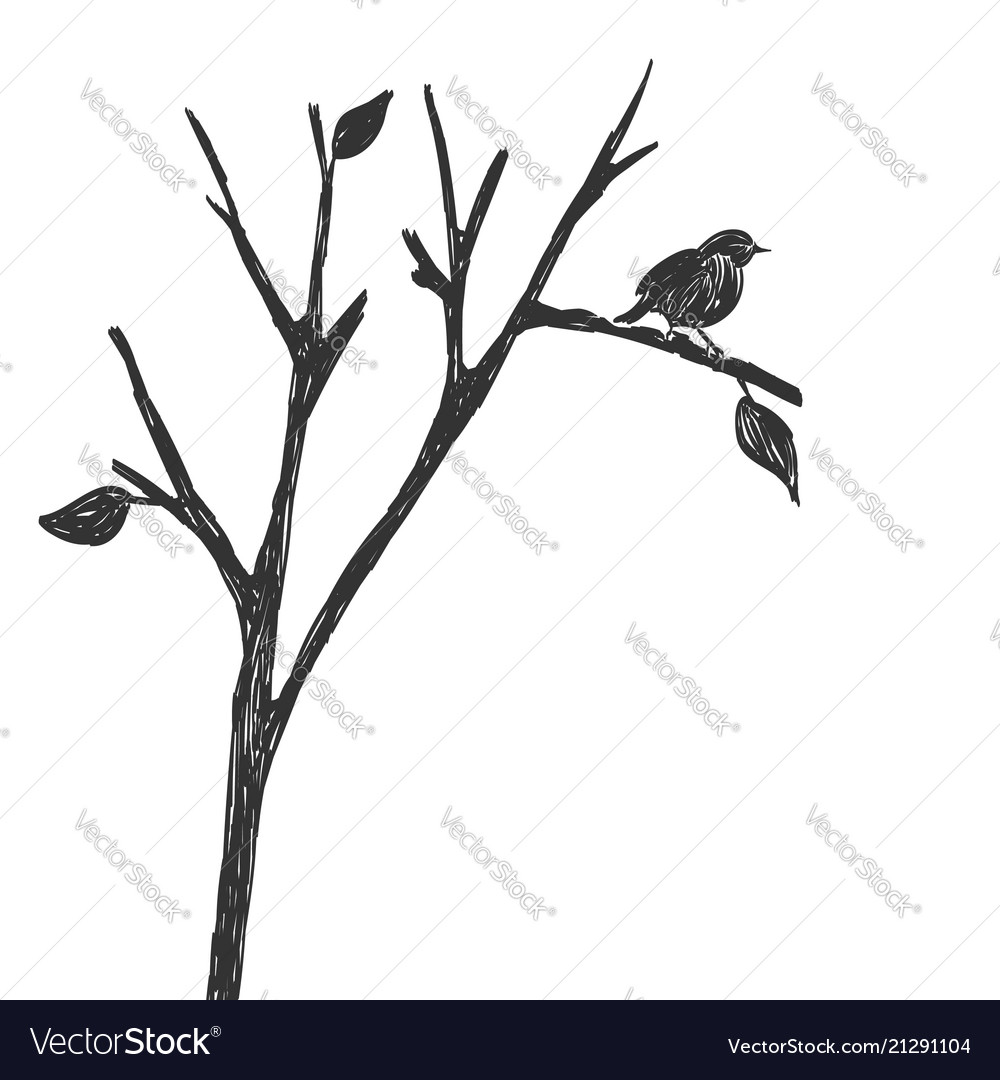 Silhouette of one bird on a branch figure sketch