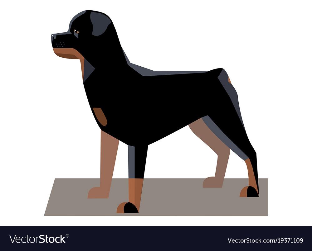Rottweiler minimalist image