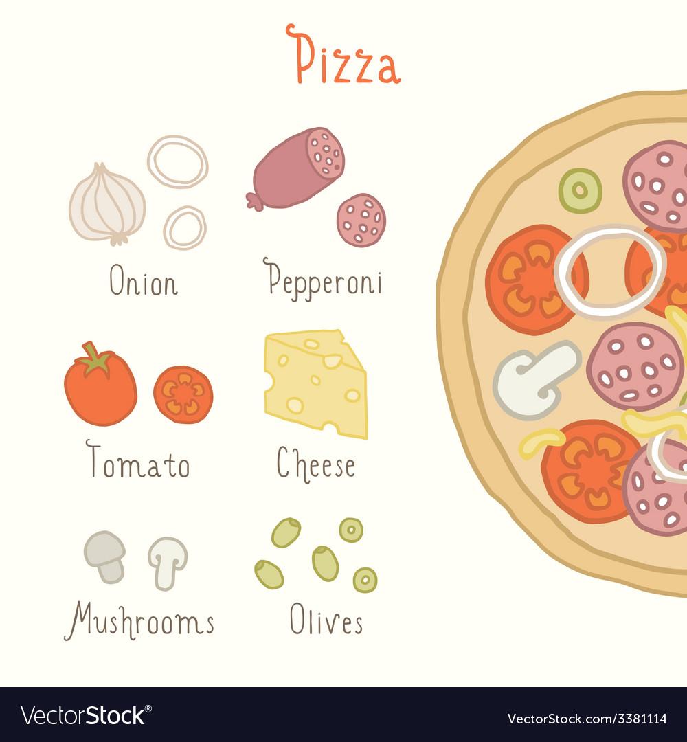 Regular pizza ingredients vector image
