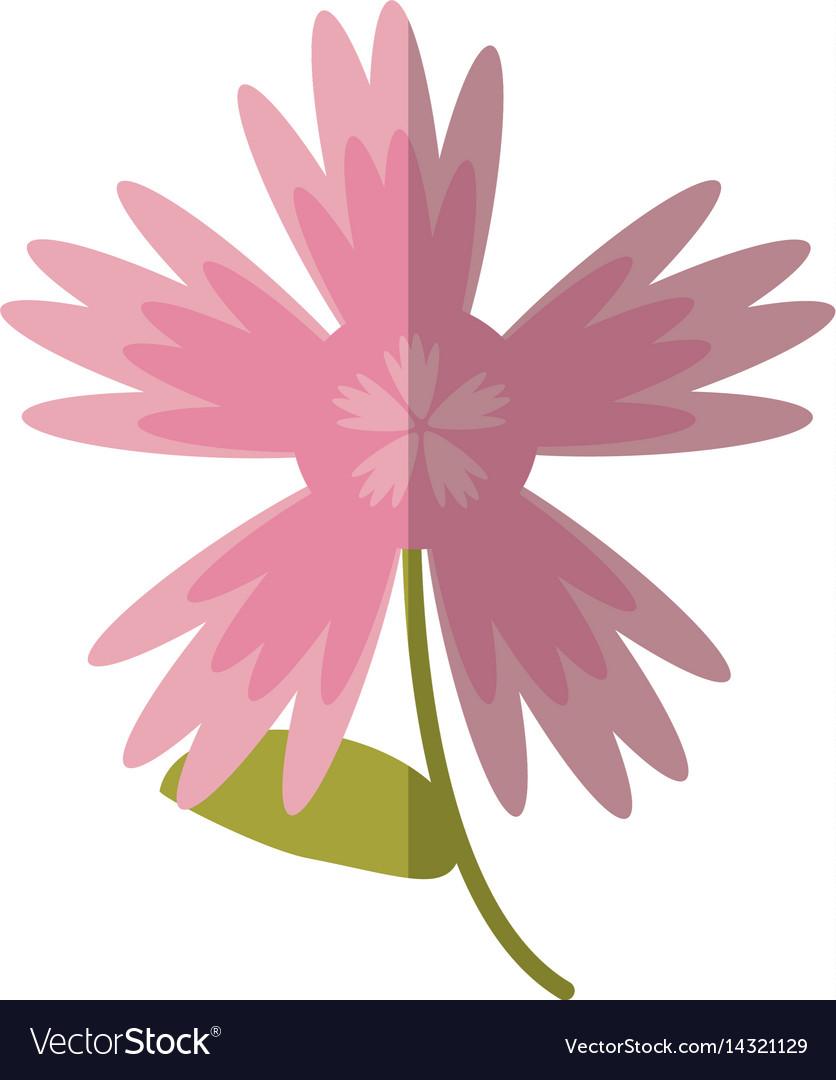 Cartoon pink flower spring decoration