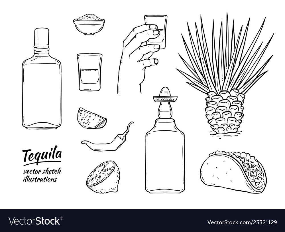 Glass tequila bottle sketch icon isolated