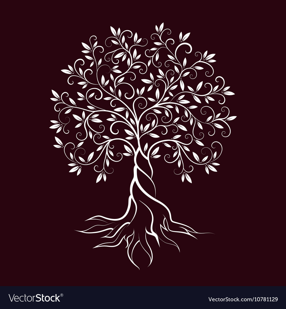 Olive tree outline curl silhouette icon