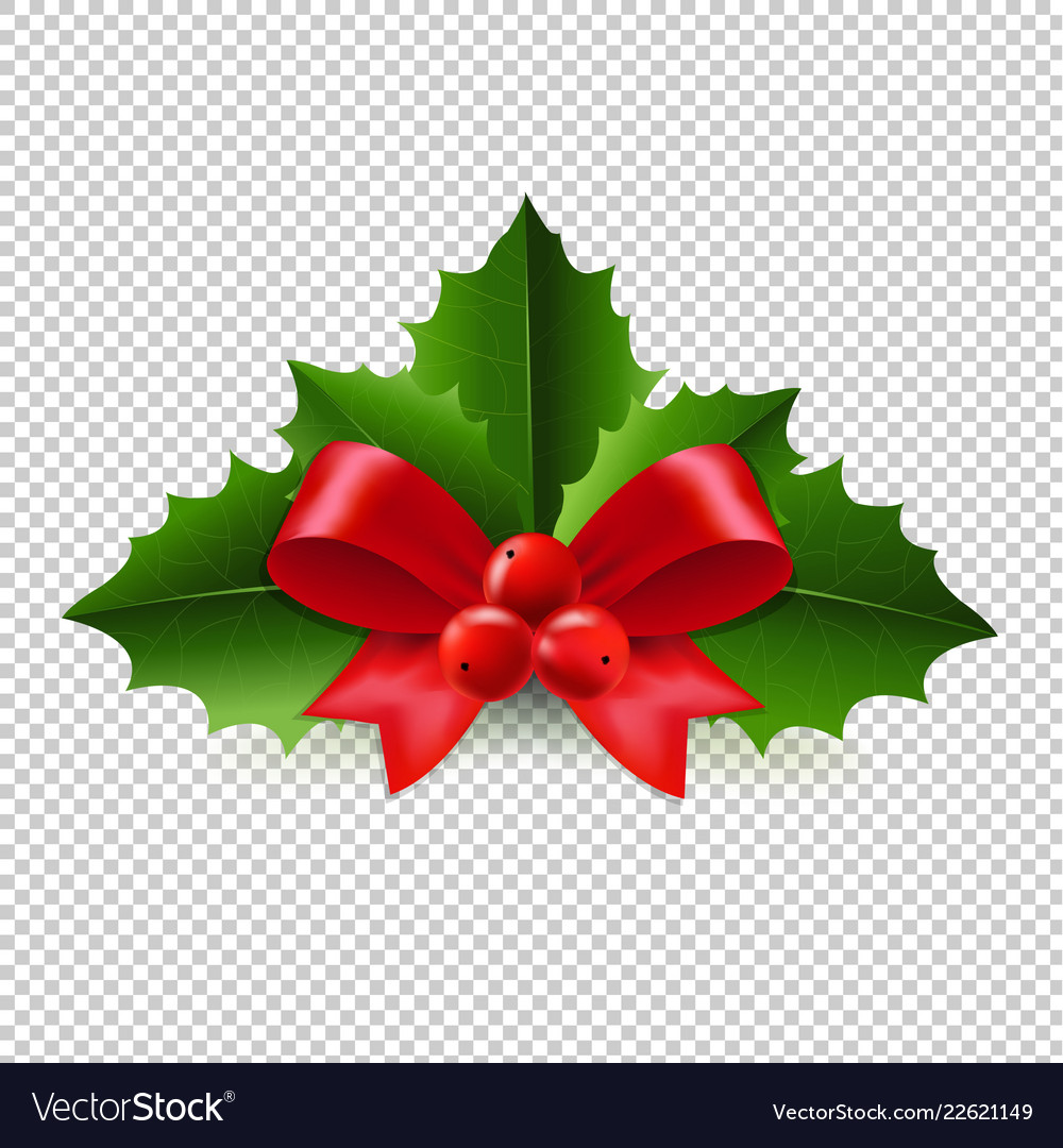 Christmas Graphics Transparent.Christmas Holly Berry Transparent Background