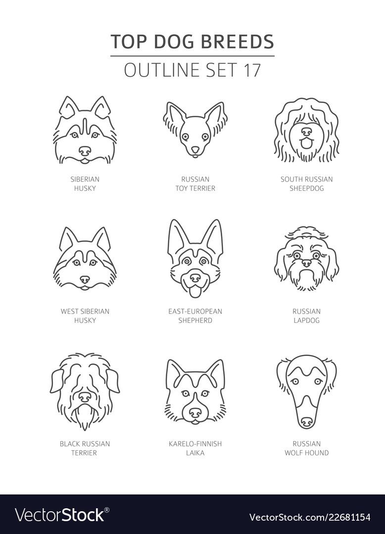 Siberian Husky Outline Vector Images 34