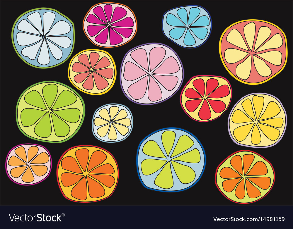 Colorful citrus on black background vector image