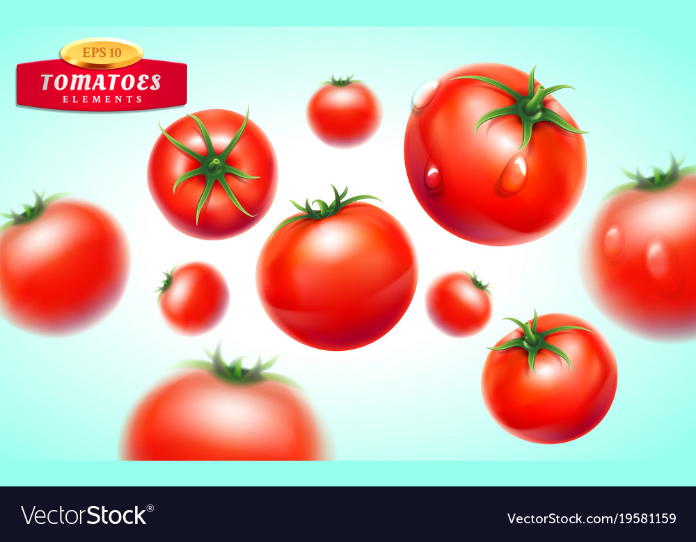 Tomato realistic 3d fruit vegetable juice