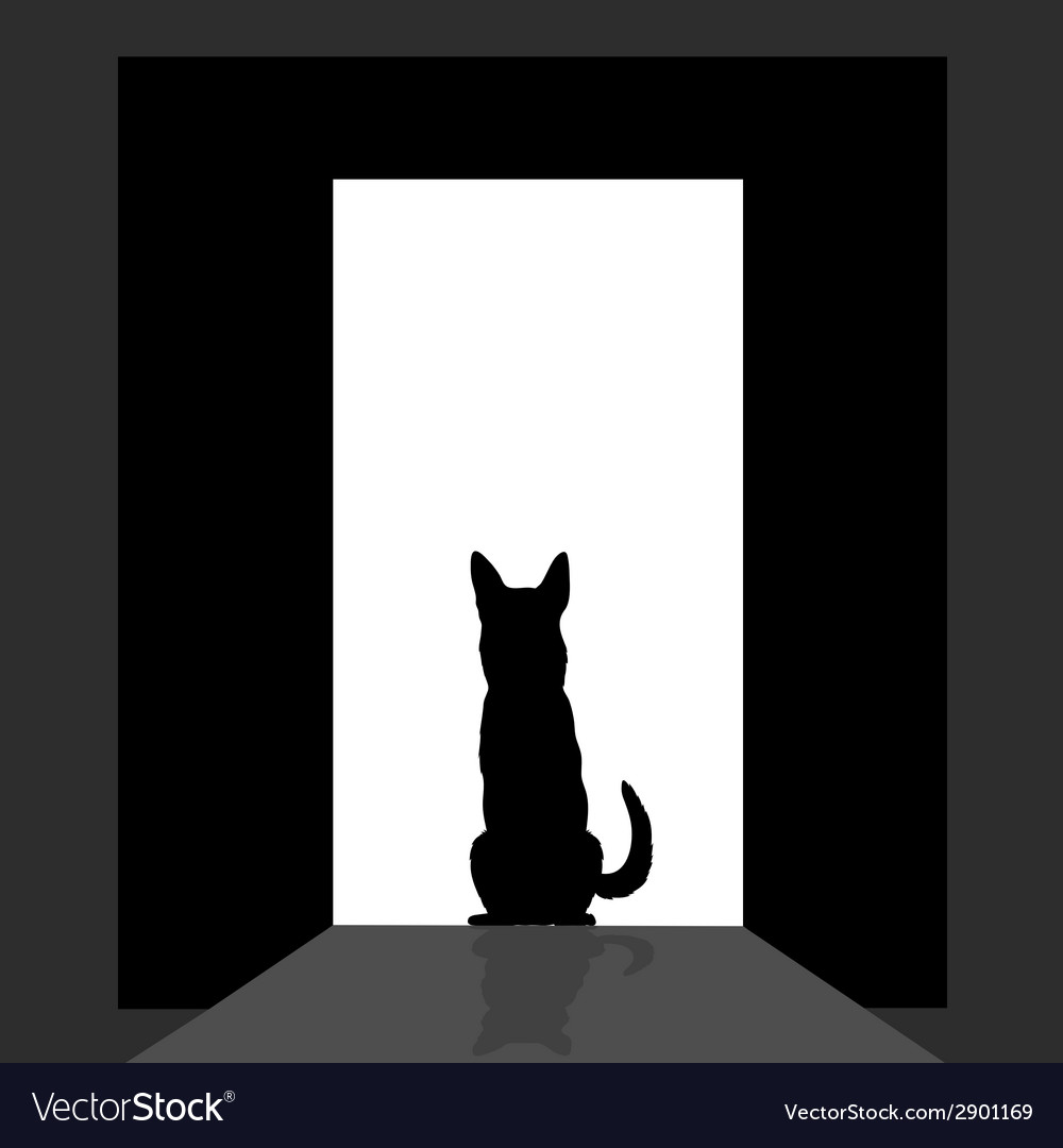 German shepard at the door silhouette