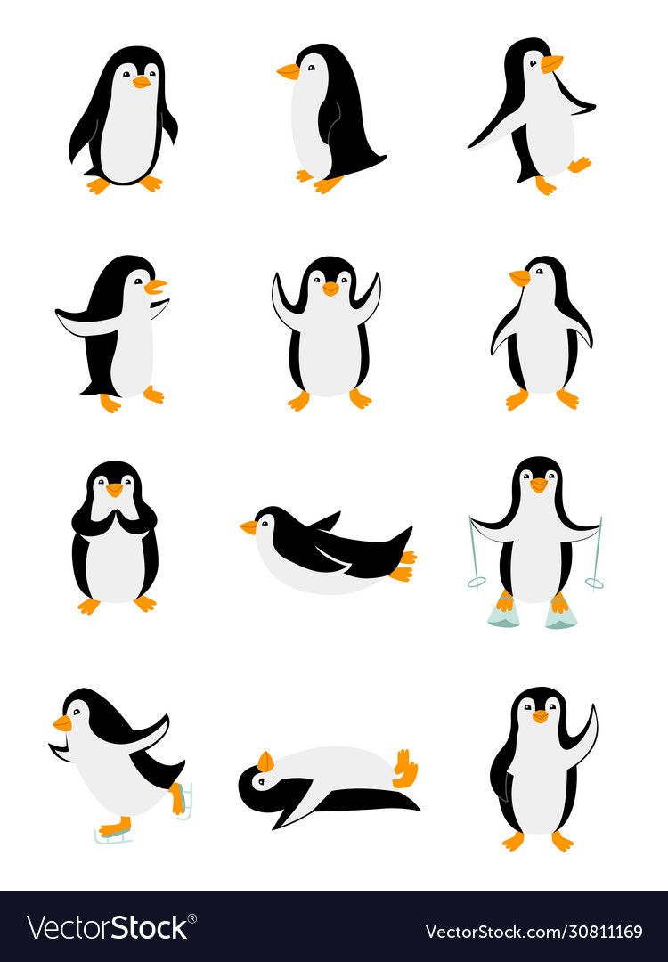 Set little penguins in different poses funny