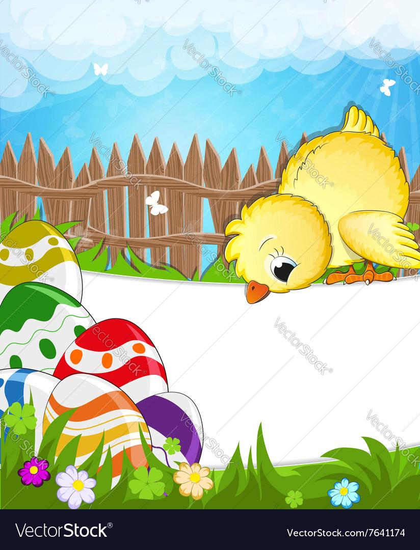 Fluffy chicken in a meadow