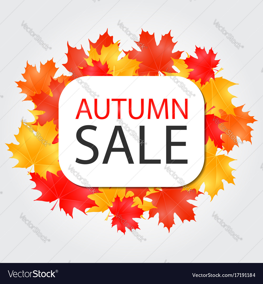 Autumn sale banner discount offer with