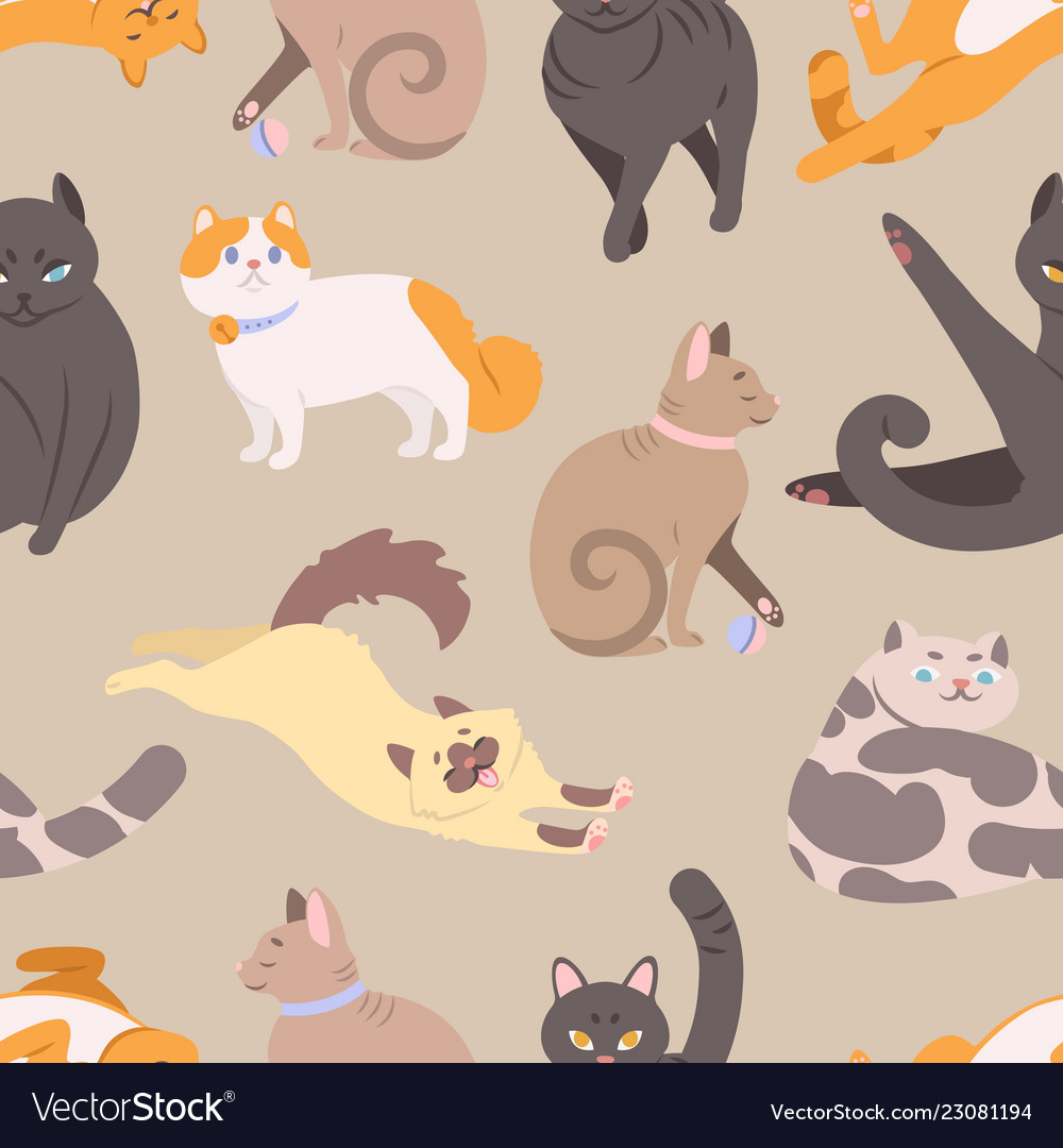 Seamless pattern with cats various breeds