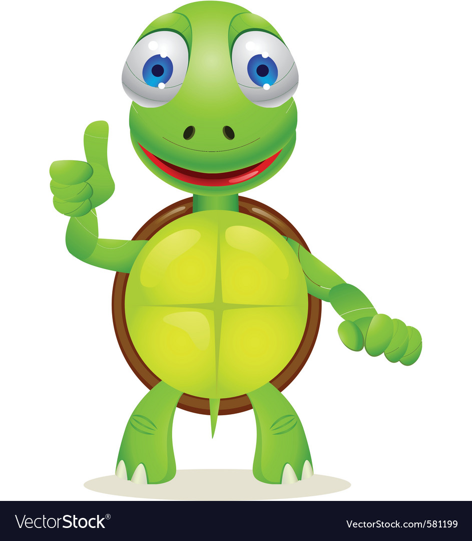 Turtle Cartoon Royalty Free Vector Image Vectorstock