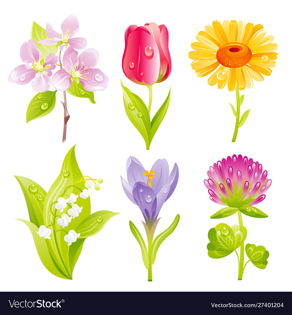 Flower icon set cartoon floral blossom spring