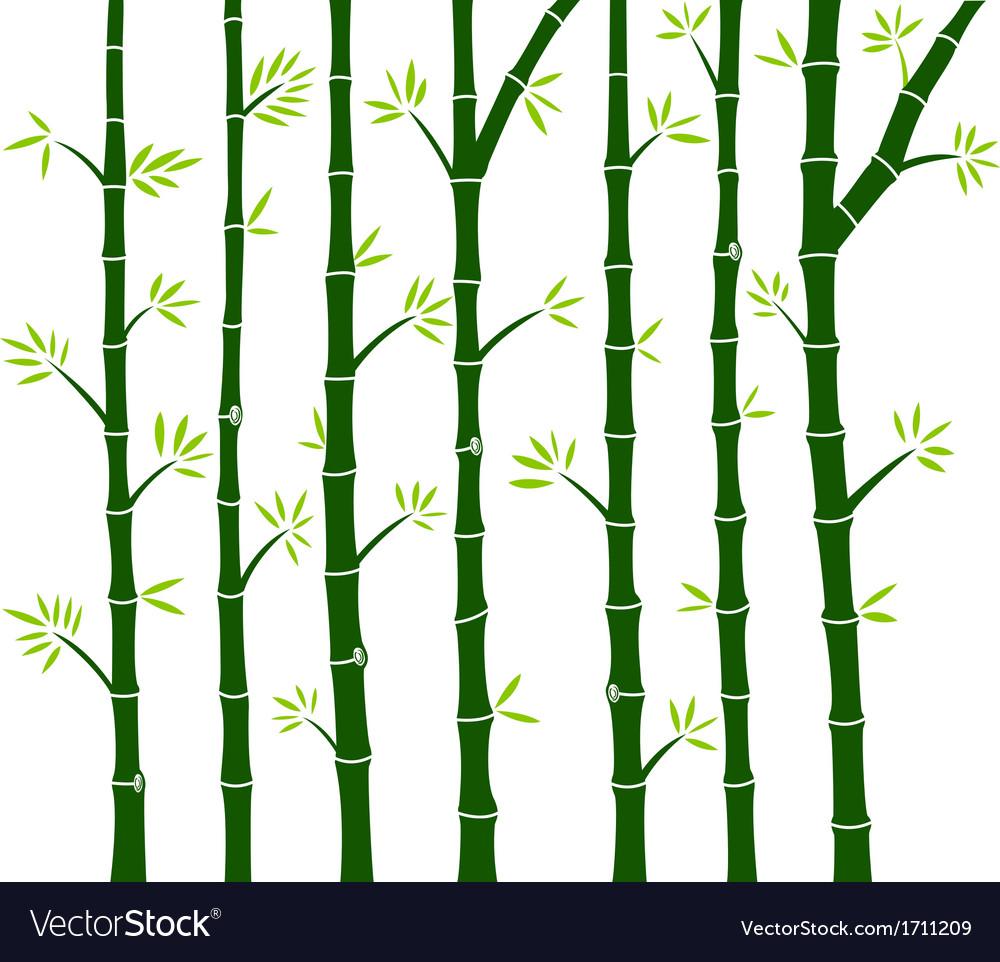 Bamboo Tree Wall Decal Royalty Free Vector Image