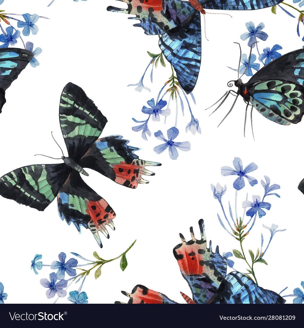 Beautiful watercolor colorful butterflies