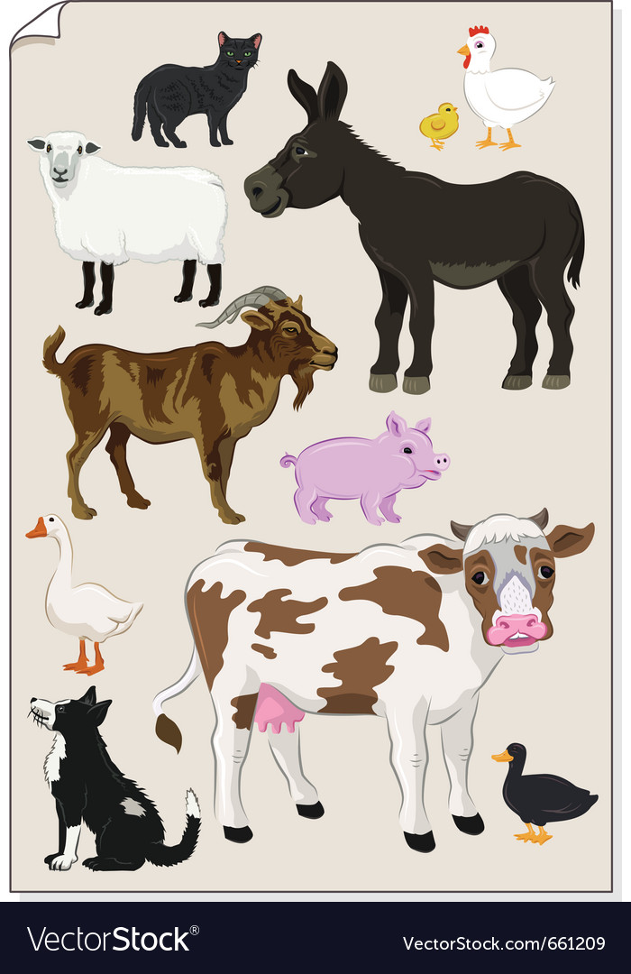 Farm animals stickers vector image