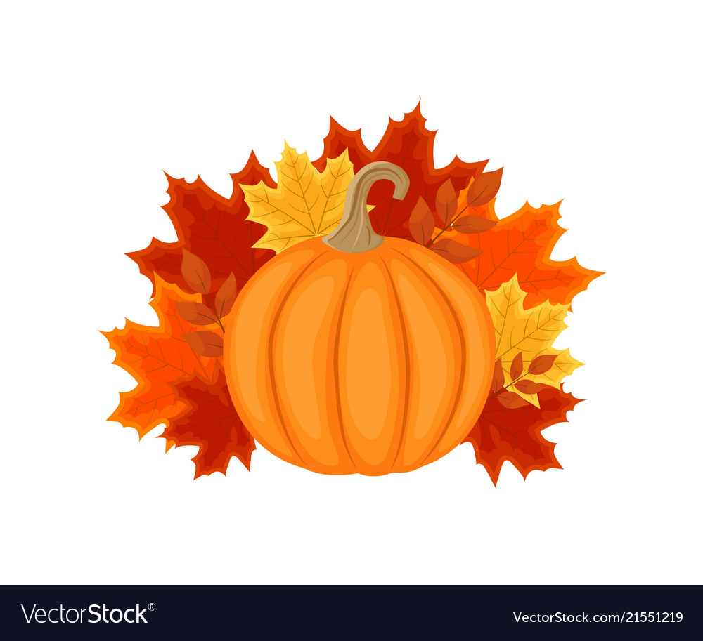 Autumn design with autumn leaves and pumpkin