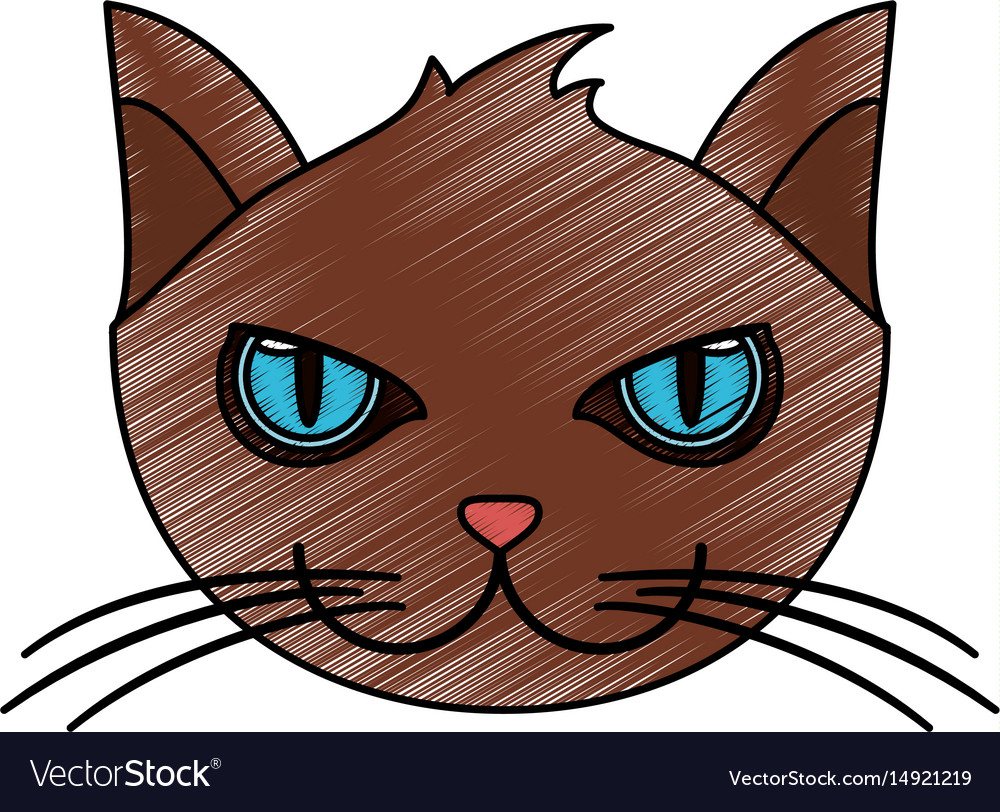 Color pencil cartoon front view face cat animal