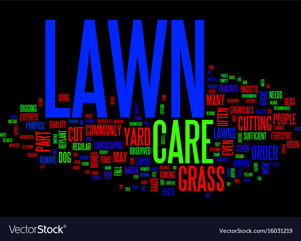 Lawn care faq text background word cloud concept