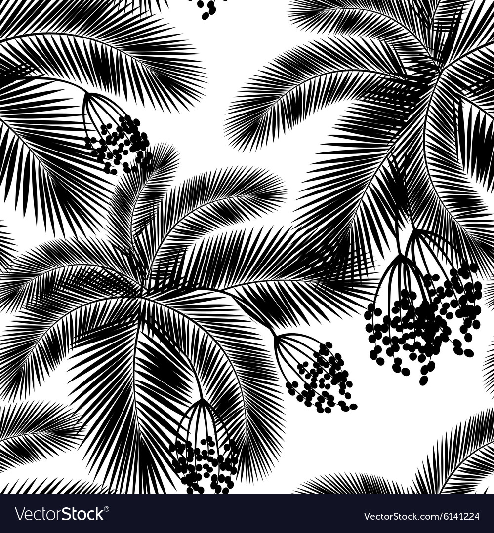 Seamless black and white palm leaves and fru