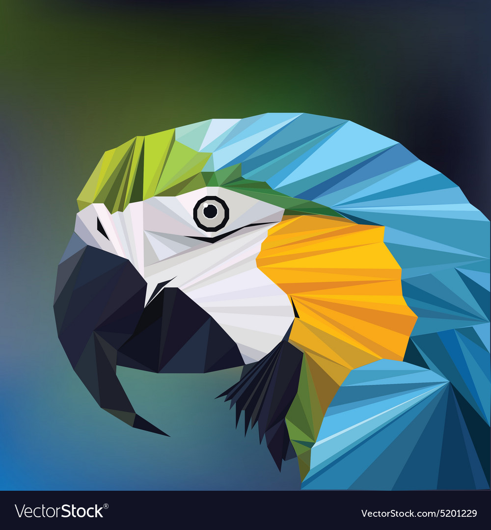 Polygon Parrot Vector Images 42 Origamiorigami Macaw Parrotorigami Diagram