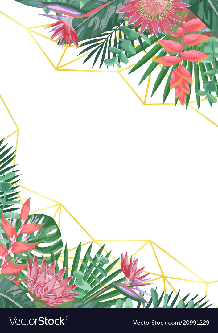 Tropical flower and geometric background