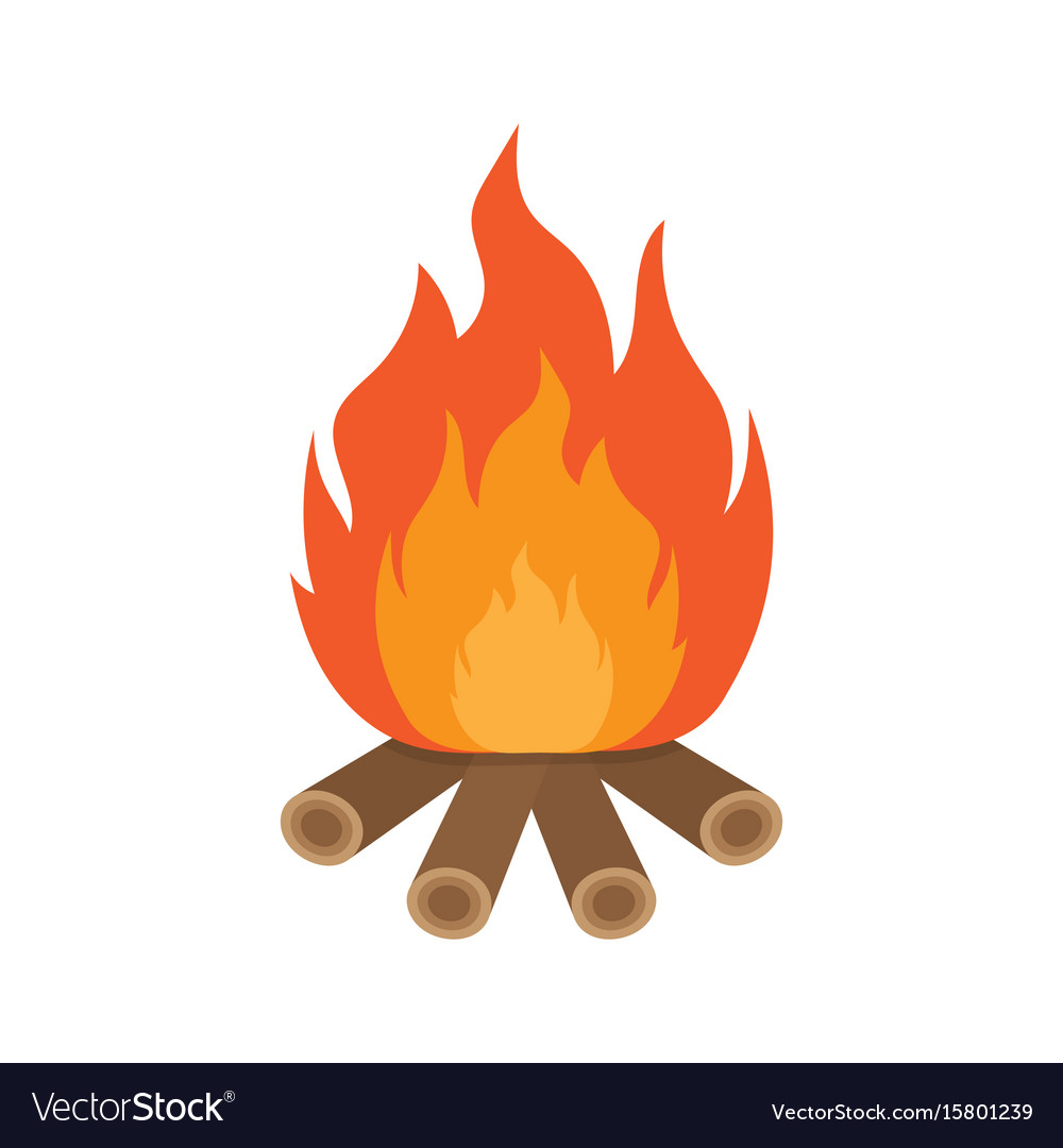 Burning bonfire with wood